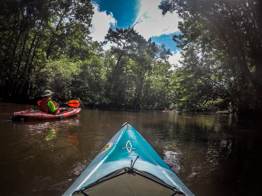 Edisto River from Bobcat Landing to Brabham Landing