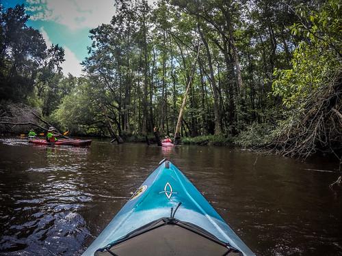 bambergchamberofcommerce bamberggounty copyright2019thomasetaylor edisto kayaking lowcountryunfiltered paddling southcarolina southfork bamberg unitedstatesofamerica