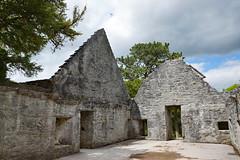 2019-06-07 06-22 Irland 591 Killarney, Muckross Lake Walk, Muckross Abbey