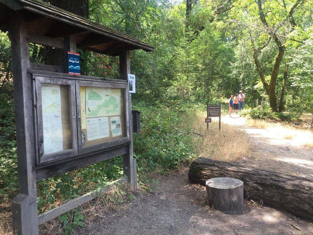Bothe Ridge Trail TH