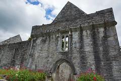 2019-06-07 06-22 Irland 584 Killarney, Muckross Lake Walk, Muckross Abbey