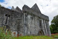 2019-06-07 06-22 Irland 592 Killarney, Muckross Lake Walk, Muckross Abbey