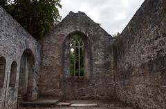 2019-06-07 06-22 Irland 587 Killarney, Muckross Lake Walk, Muckross Abbey