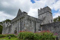 2019-06-07 06-22 Irland 583 Killarney, Muckross Lake Walk, Muckross Abbey