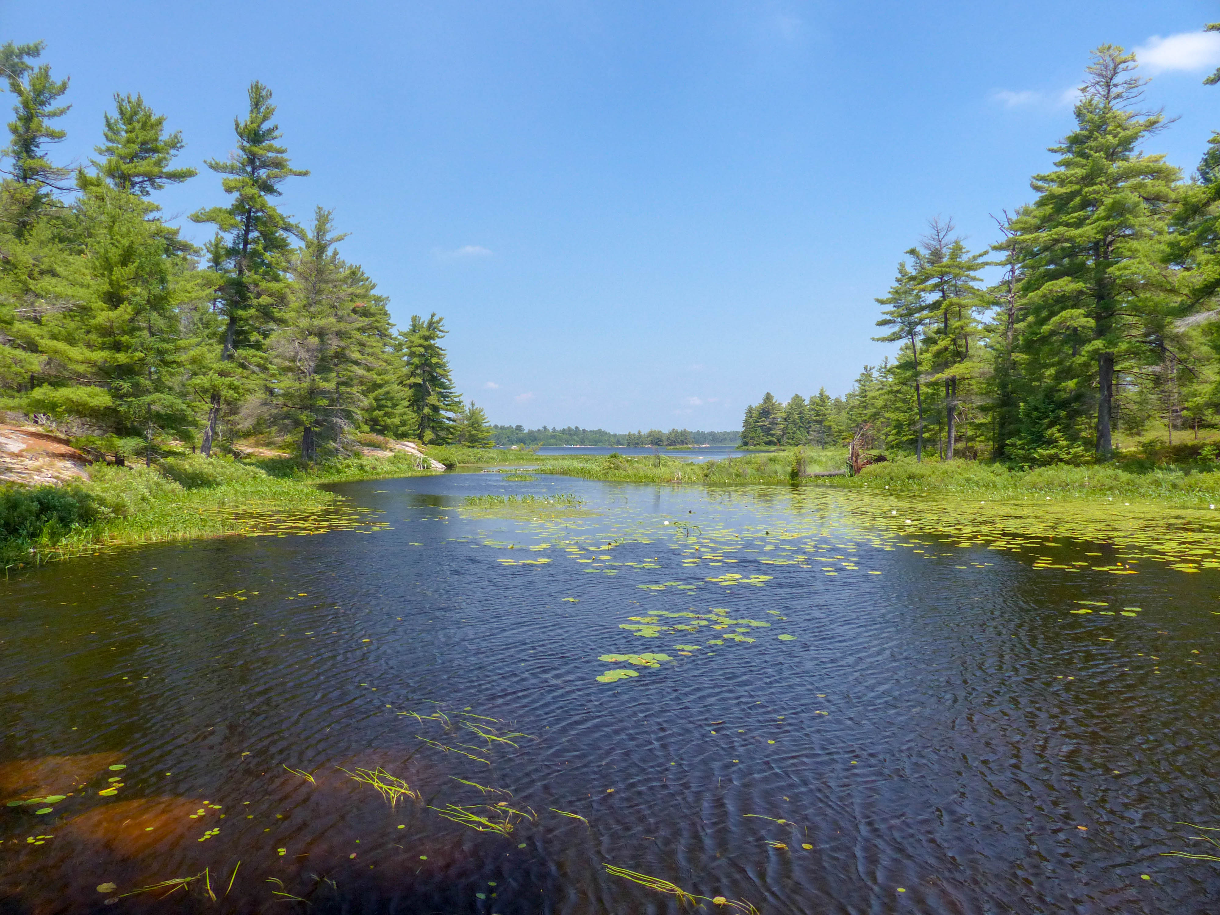 Grundy Lake and French River Provincial Parks (8)