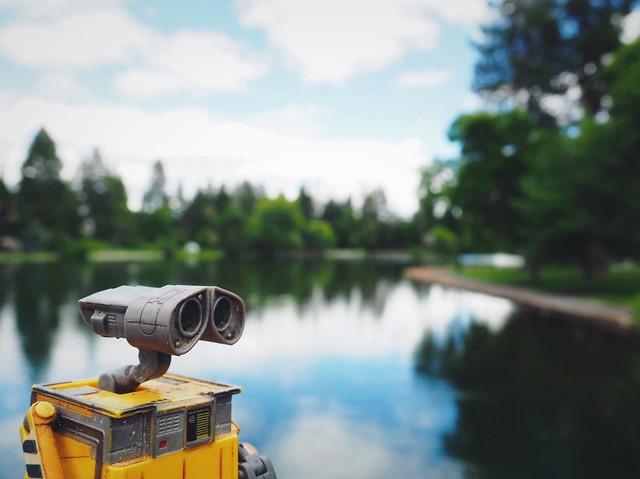 Wall-e At Drake Park