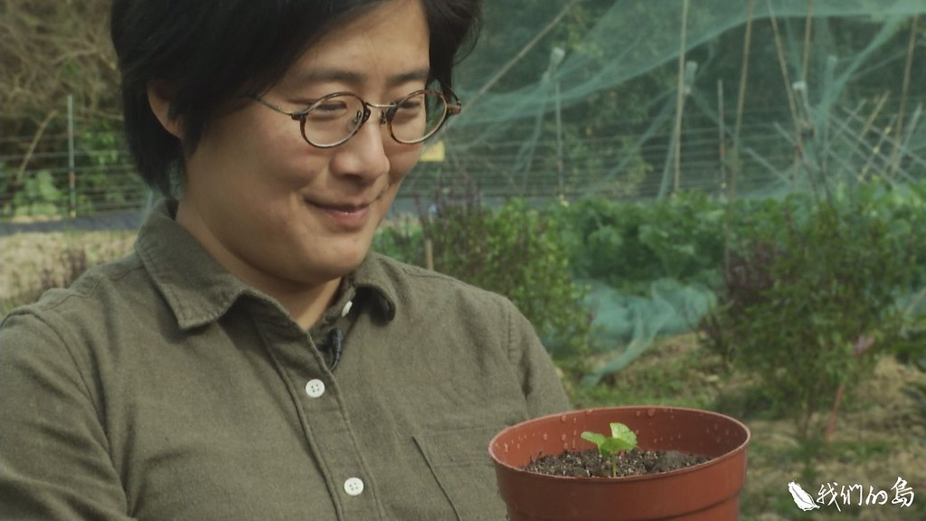 香港大學團隊與企業、民間組織合作,從2013年開始,推動復村、復耕的生態農村試驗計畫。
