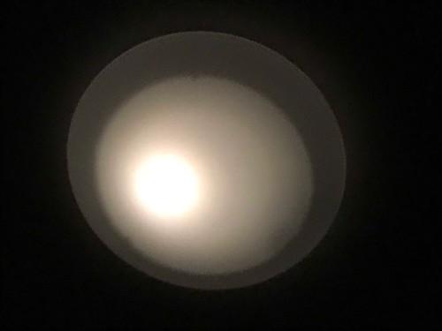 LED 小丸電球