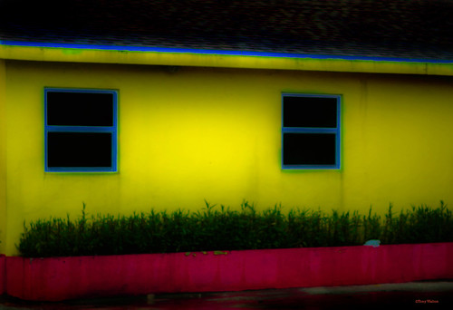windows yellow cayman islands | by Tony - Walton