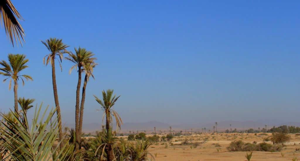 Winterzon: bezoek het Pullman Resort in Marrakech | Mooistestedentrips.nl