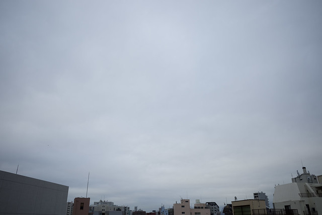 GR001788.jpg