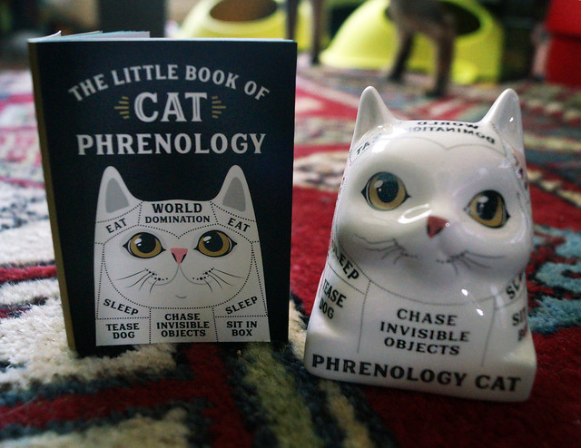 phrenologycatBookFreddyC08680