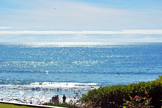 Beach Daze #1 San Clemente