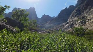 Vues de la descente du ravin de la Paglia Orba : passage dans les aulnes ?