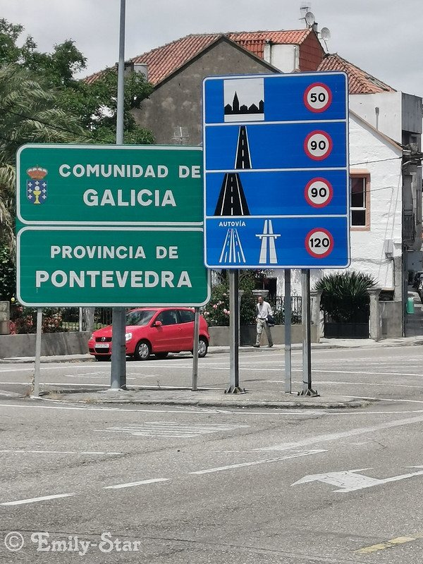 Camino Portugues - Tag 8-145506