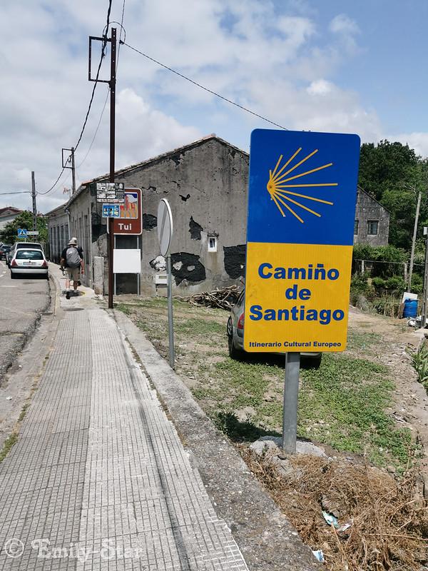 Camino Portugues - Tag 8-145529