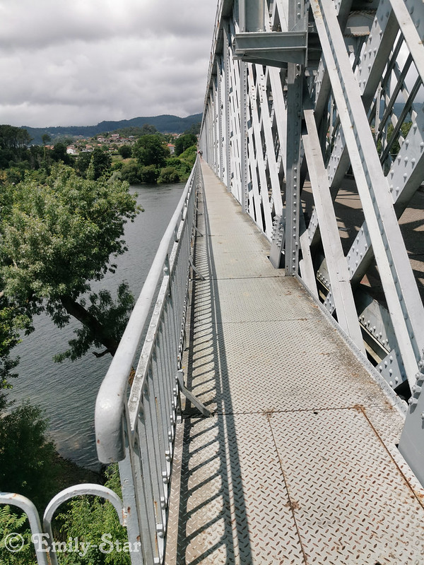 Camino Portugues - Tag 8-144840
