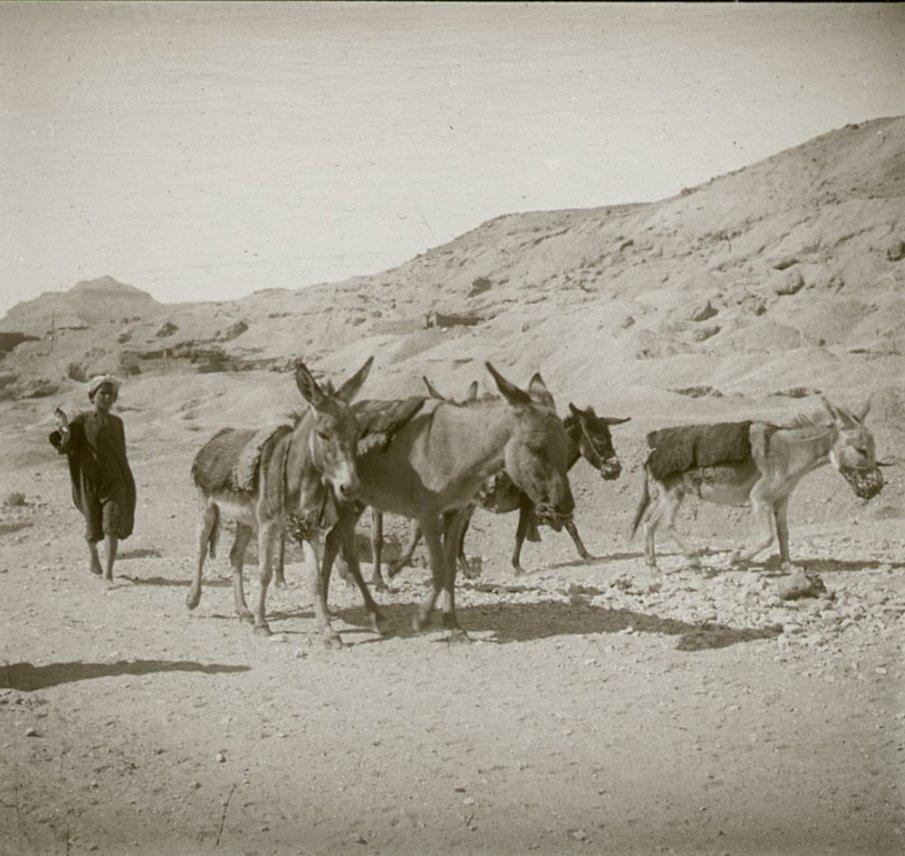 1910. Египет. Окрестности Луксора. Маленькие труженики
