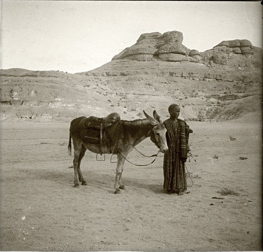 1910. Египет. У Бени-Гассана в узкой долине