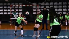 Liga de Voleibol