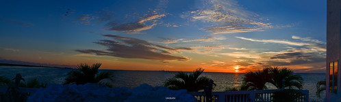 windows sunset panorama home nature water birds architecture reflections seaside nikon tampabay florida lifestyle palmtrees apollobeach imrananwar d850 saintpetersburg imran imranan