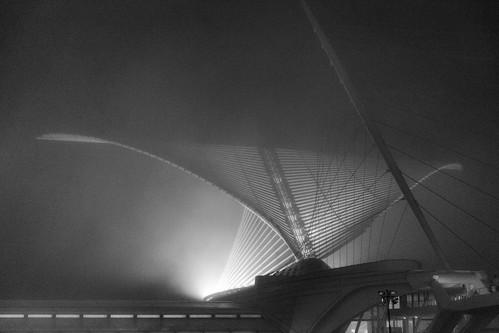 MAM in Fog
