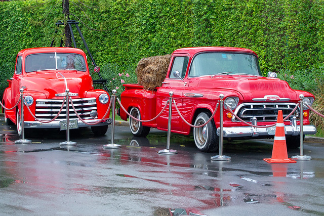 Bevy of Chevys