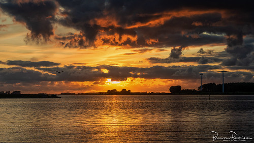 Haringvliet Sunset