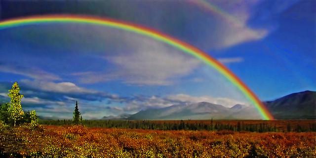 Spectacular Nature !