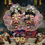 ISKCON Ujjain Deity Darshan 09 July 2019