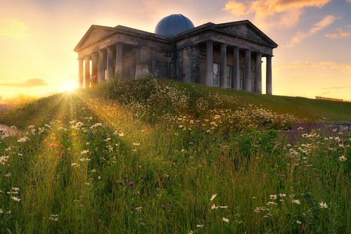 nd formatthitech sonyfe24105mmf4goss fe24105mmf4goss glens architecture britain wildflowers flowers cityobservatory observatory caltonhill dusk edinburgh europe glow goldenhour historic haze iconic landscapephotography scottishlandscapephotography landscape outdoors photography scotland scottish sonya7rii sony sonyilce7rm2 ilce7rm2 a7rii sunset summer shadows twilight uk unitedkingdom