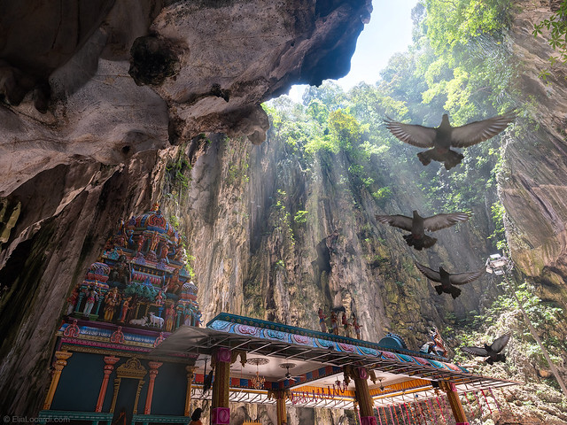 Taking Flight || Batu Caves