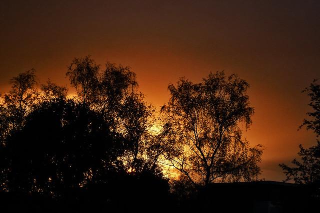Sunset ... (1200425)