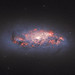 Hubble Watches Stars in Bloom