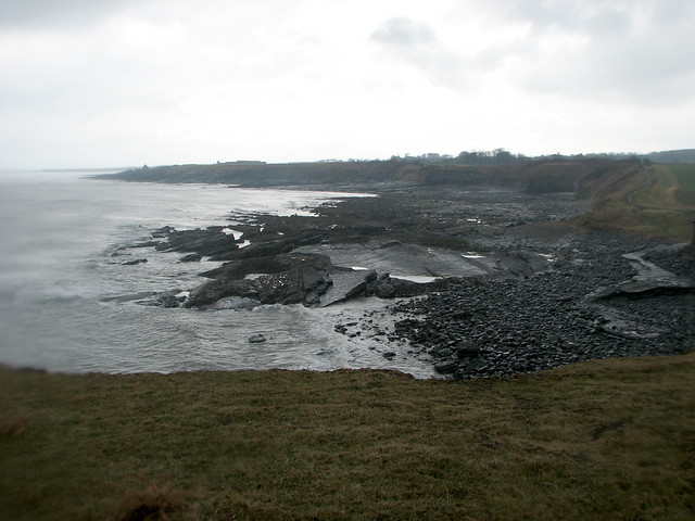 The coast south of Craster