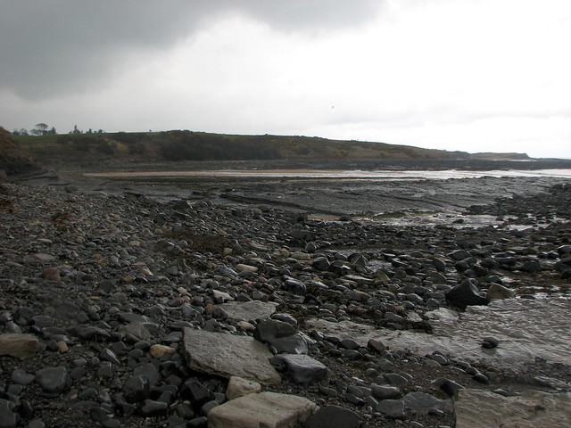 The coast south of Howick