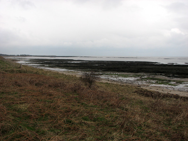 The coast north of Alnmouth