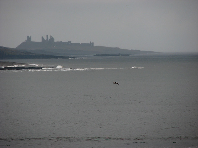 Dunstanburgh castle from near Alnmouth