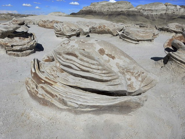 Eroded Cracked Egg - Bisti