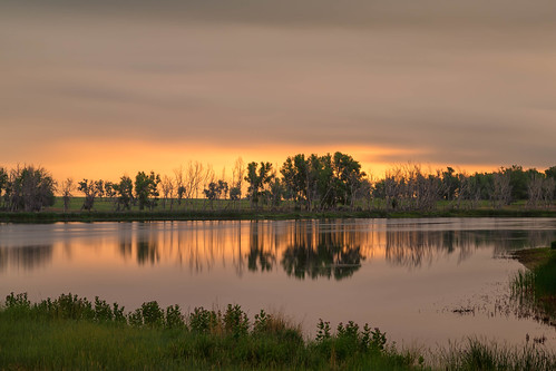 lake reflections clouds trees silhouettes grass sunrise dawn daybreak longexposure le rockymountainarsenalnationalwildliferefuge colorado