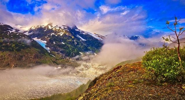 Glacier In Late Summer