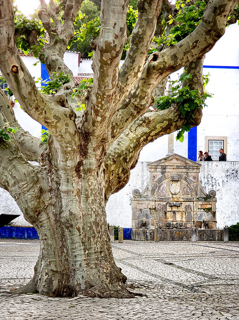Across from Misericordia Church in Obidos, Portugal