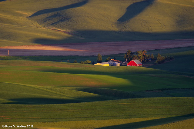 Farm from Steptoe Butte