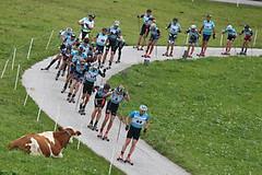 Marcialonga na kolečkových lyžích, aneb konečně pořádný závod