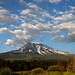 "<p><a href=""https://www.flickr.com/people/tomhilton/"">Tom Hilton</a> posted a photo:</p> 	 <p><a href=""https://www.flickr.com/photos/tomhilton/48248759491/"" title=""Mt. Shasta""><img src=""https://live.staticflickr.com/65535/48248759491_ce64a347d0_m.jpg"" width=""240"" height=""160"" alt=""Mt. Shasta"" /></a></p>  <p>From Weed, CA</p>"