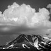 "<p><a href=""https://www.flickr.com/people/tomhilton/"">Tom Hilton</a> posted a photo:</p> 	 <p><a href=""https://www.flickr.com/photos/tomhilton/48248759661/"" title=""Mt. Shasta""><img src=""https://live.staticflickr.com/65535/48248759661_314346cf07_m.jpg"" width=""240"" height=""160"" alt=""Mt. Shasta"" /></a></p>  <p>From Weed, CA</p>"