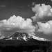 "<p><a href=""https://www.flickr.com/people/tomhilton/"">Tom Hilton</a> posted a photo:</p> 	 <p><a href=""https://www.flickr.com/photos/tomhilton/48248844552/"" title=""Mt. Shasta""><img src=""https://live.staticflickr.com/65535/48248844552_22639f034d_m.jpg"" width=""240"" height=""135"" alt=""Mt. Shasta"" /></a></p>  <p>From Weed, CA</p>"