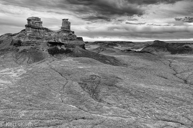 A Monochrom Day in Bisti