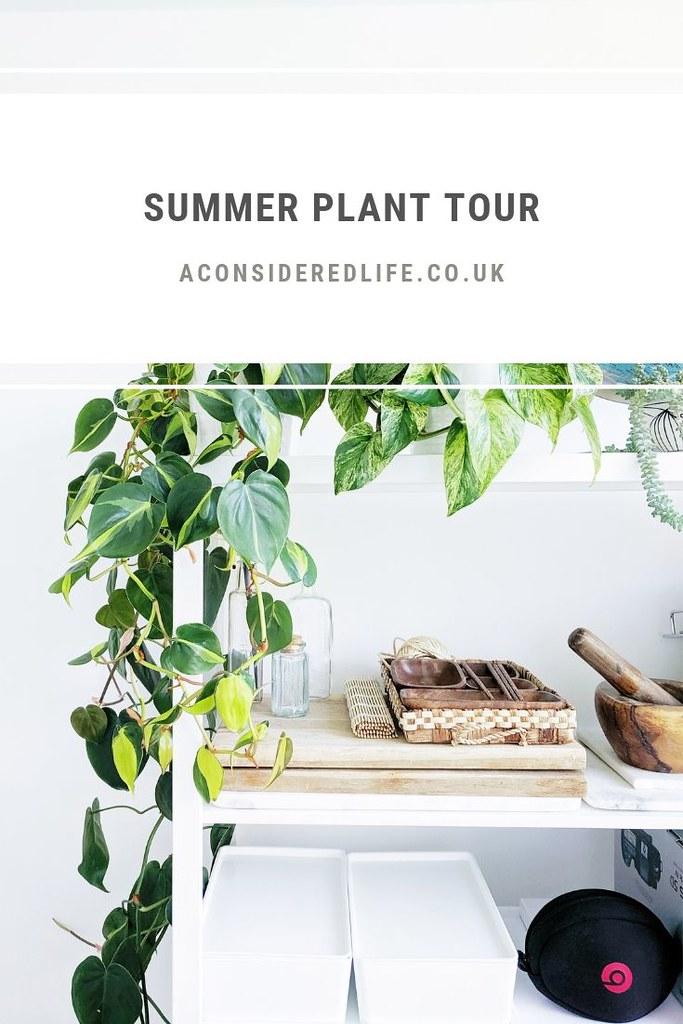 Summer Plant Tour