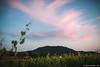 Il Monte Orfano al tramonto.